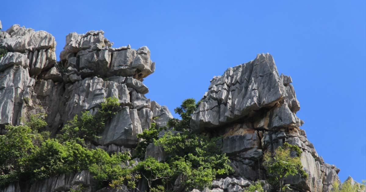 พบลิงยักษ์ พญาวานร บนยอดเขาหน่อ จ.นครสวรรค์