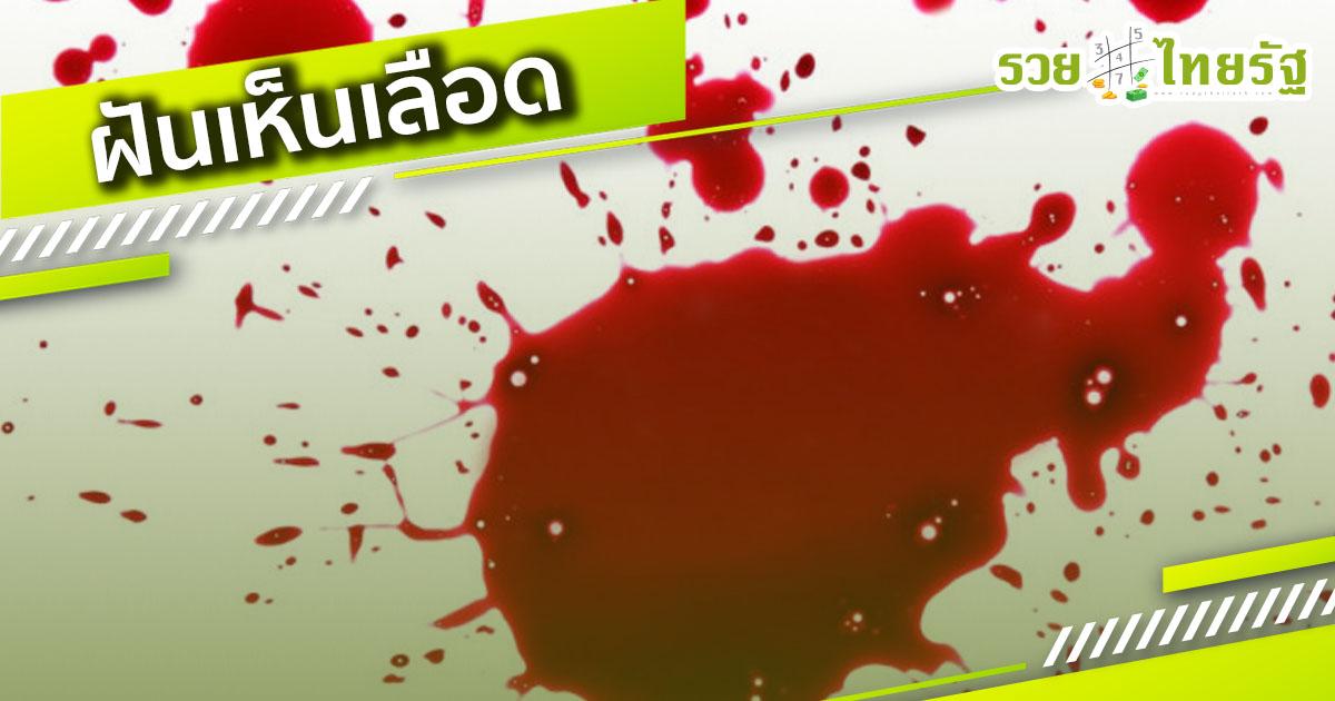 เมื่อคุณ ฝันเห็นเลือด ขอทำนายว่า..